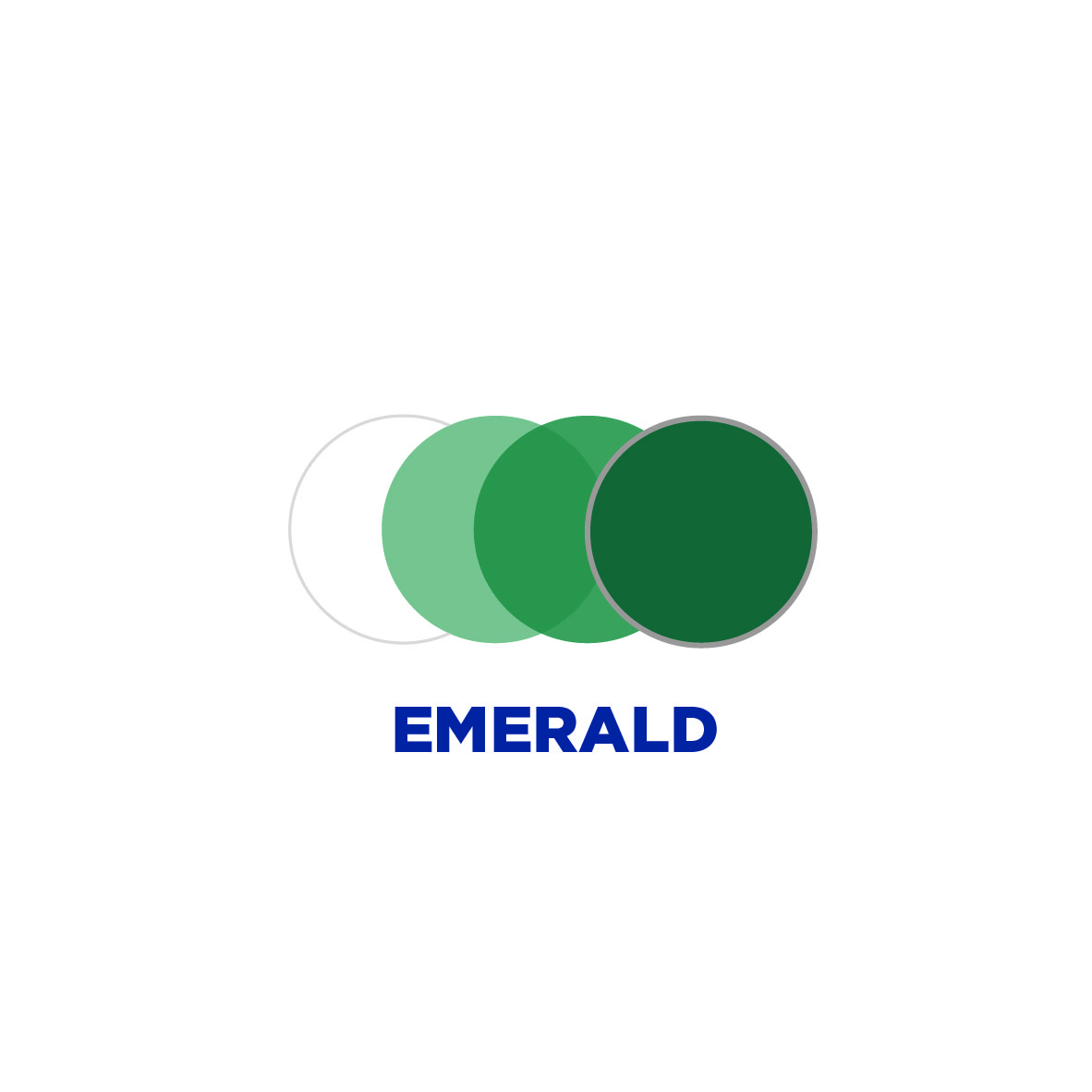 transitions_signature_style_colors_line_of_lenses_emerald_with_writing_jpg.jpg